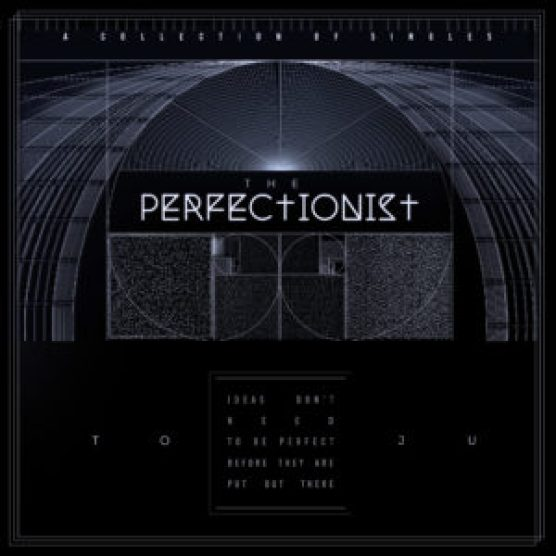 ThePerfectionist Cover Art