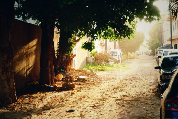 舗装されていない路地に朝日が差し込み、とりのさえずりとホウキで庭先を履く音がします
