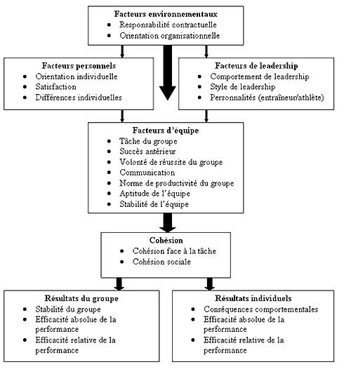 Modèle conceptuel de la cohésion des équipes sportives de Carron