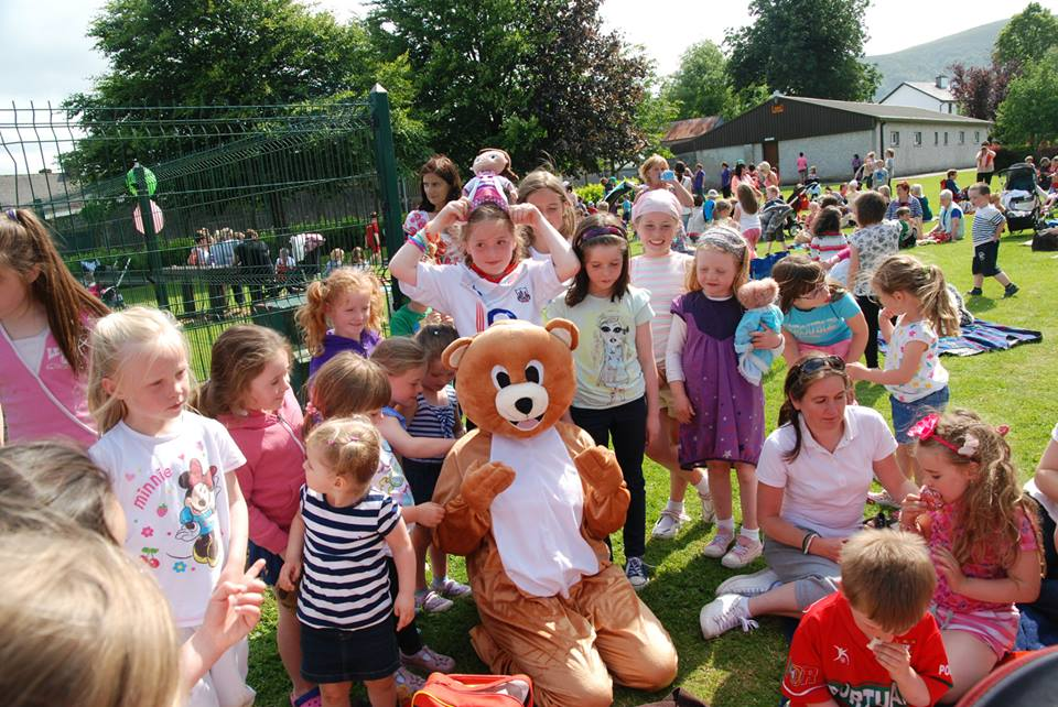 party in the park millstreet