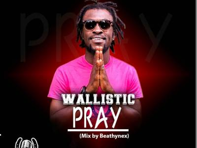 Download Music: Wallistic - Pray( Mix By Beatzhynex)