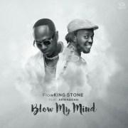 Download Flowking Stone ft Akwaboah – Blow My Mind