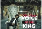 Download Mr Pounds - Voice of the King (Prod By JaySoundz)