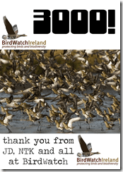 Birdwatch Ireland hits 3,000 likes on Facebook