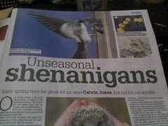 wildlife-column-irish-independent