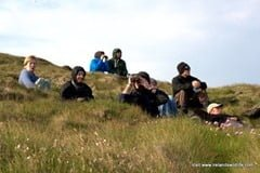Looking for cetaceans from an Irish headland. IWDG Cape Clear Course, May 2012