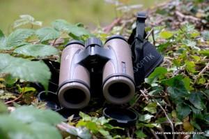 Swarovski CL Companion Binocular Review