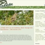 Wildside.ie — exploring the nature and wildlife of Wexford