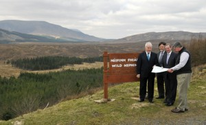 Wild Nephin wilderness park