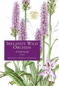 Irelands Wild Orchids