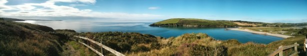 Guided wildlife and nature walks in West Cork, Ireland