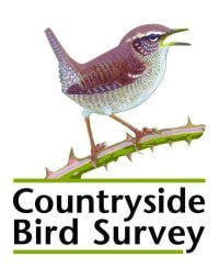 Take part in a Birdwatch Ireland survey