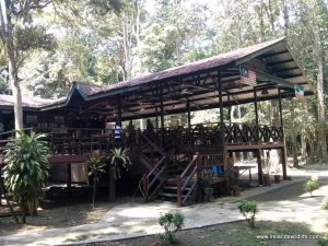Kinabatangan Jungle Camp