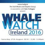 Saturday 27 August 2016 is Whale Watch Ireland Day