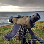 Hawke Endurance 50 12-36x Spotting Scope Review