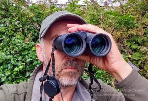 Testing the Kite Caiman 8x42 binoculars