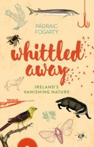 Whittled Away by Padraic Fogarty