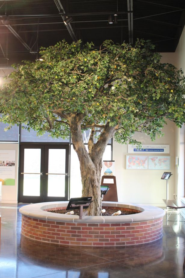 Replica of the apple tree that Irena buried the jars under.