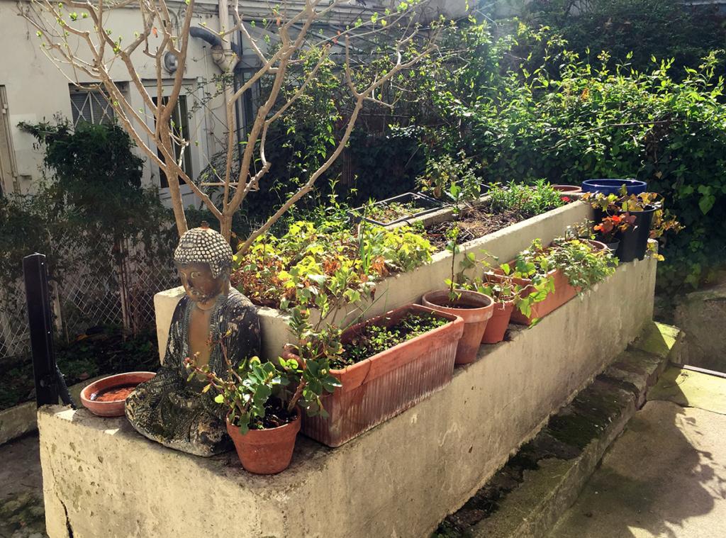 Bouddha assis dans une cour entourée de verdure