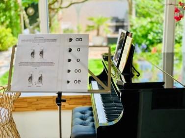 irene de raadt pianoles zangles