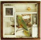 Joseph Cornell (American; Surrealism, Assemblage; 1903–1972): Untitled (The Hotel Eden) c. 1945. Construction, 15-1/8 x 15-3/4 x 4-3/4 inches. National Gallery of Canada, Ottawa, Ontario. © The Joseph and Robert Cornell Memorial Foundation.