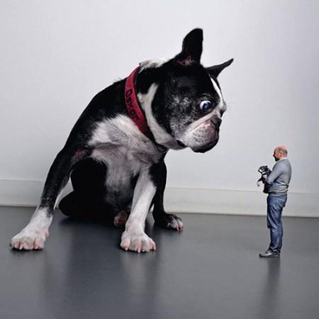 Personalisierte Geschenke: 3D Figur als Geschenk