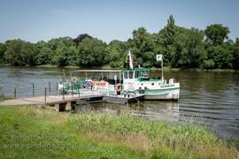 Magdeburg - Elbe am Mückenwirt
