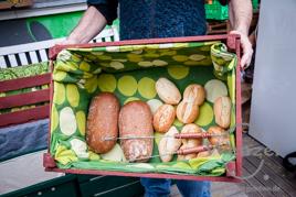 Foodsharing Projekt Magdeburg
