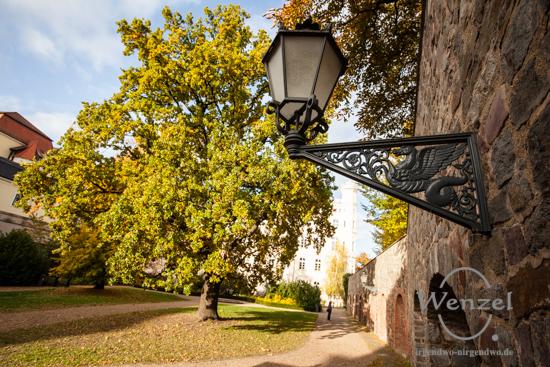 Magdeburg im Herbst - Möllenvogtei