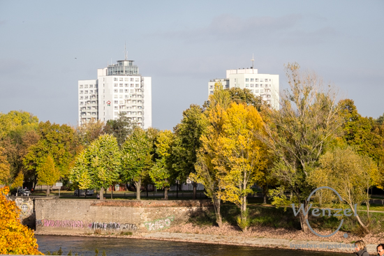 Magdeburg im Herbst - Blick zum Werder