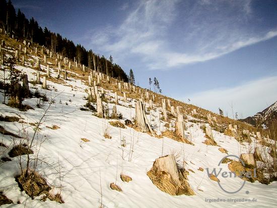 Winter in den Alpen - Januar 2001
