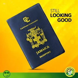 Online passport renewal to be rolled out this year