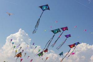 Jamaica International Kite Festival cancelled