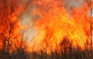 Bush fire affects large section of a St Mary community