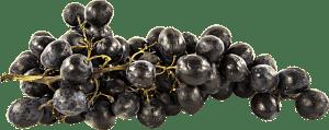 Focaccia all'uva fragola