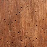 Restaura un vecchio mobile in legno riparare ai problemi del tempo