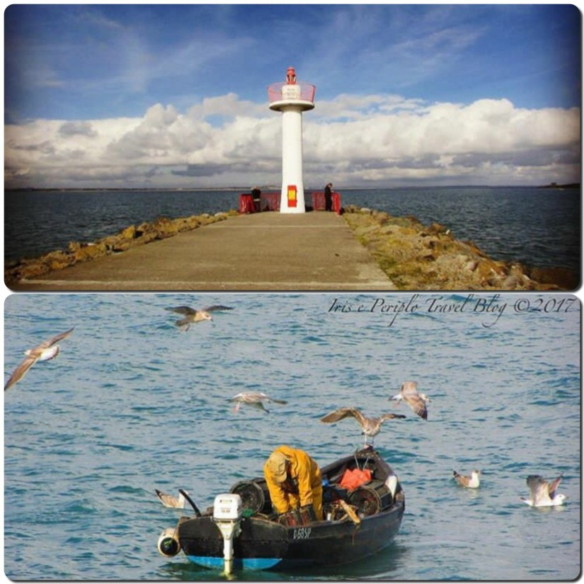 vista di howth, villaggio di pescatori