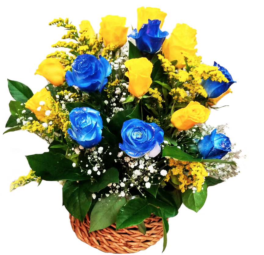 basket yellow and blue