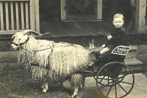 Photo courtesy of www.vintagerio.com