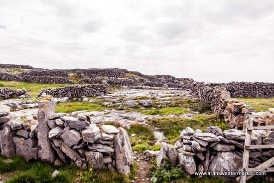 Rocky landscape of the Aran Islands
