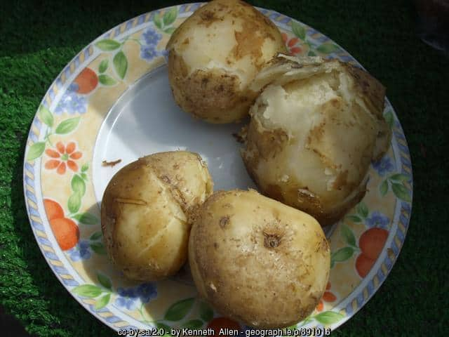 how to make floury potatoes