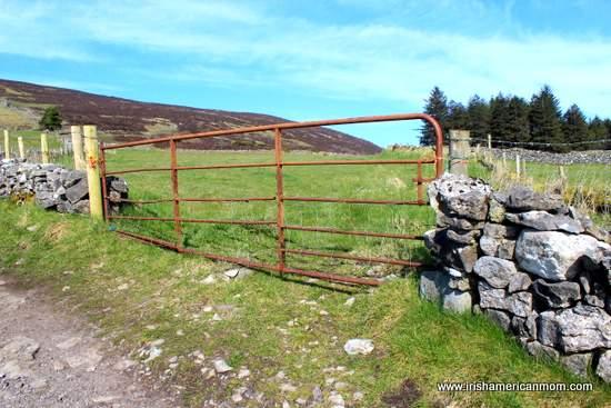 A rusty iron gate