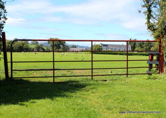 Red painted iron gate in Ireland