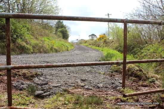 Rusty Gate in Ireland