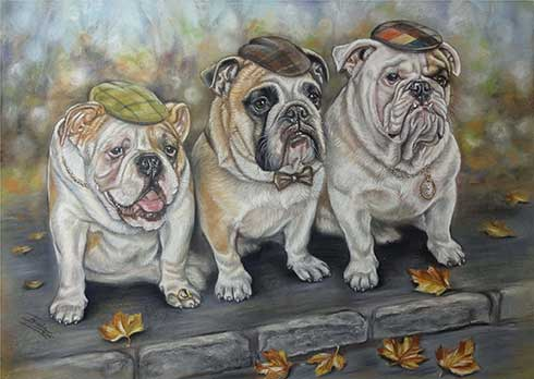 Bus Stop Bulldogs Portrait