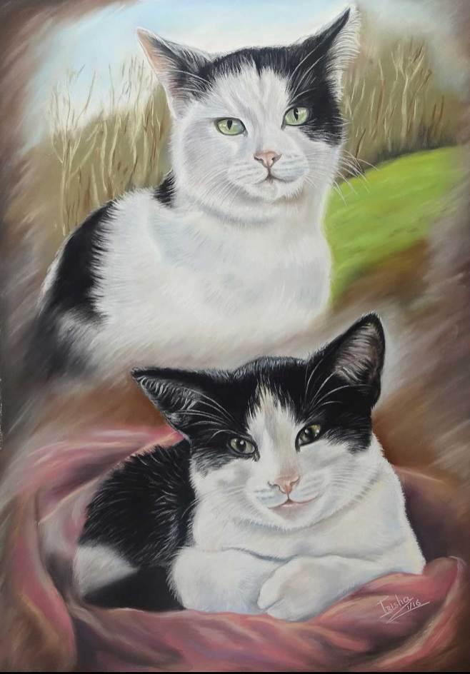 Gallery Cat Portrait 3