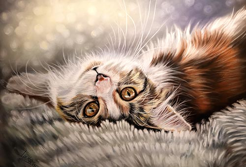 Animal Portraits - Cat portraits by Irina Petrova