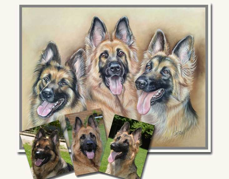 germanshepherdsportraitfromphotos