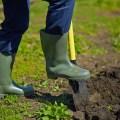 dig-soil