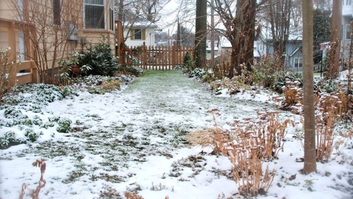 Your garden will soon wake from its winter sleep